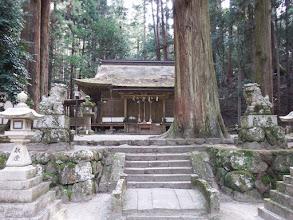 龍穴神社3