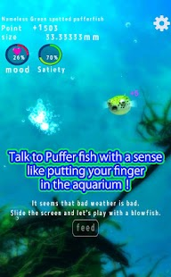 Playing with Puffer fish- screenshot thumbnail