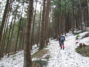Photo: 09.Czerwony szlak na trawersie Bani (1124 m). W lesie jest jeszcze sporo śniegu.