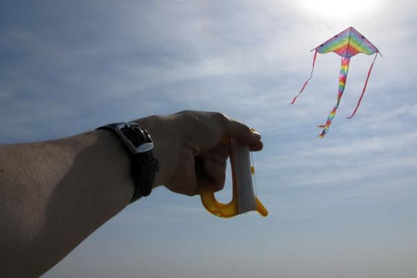 Volere volare di Bellaventu