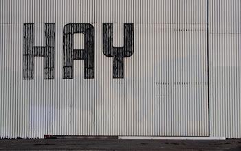 Photo: Hay