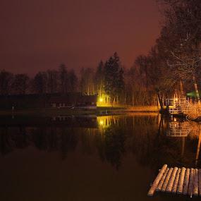 Brühlteich 2 by Franz  Adolf - City,  Street & Park  Night ( night, lake, pond )