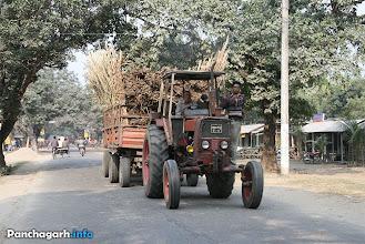 Photo: Truck carrying Sugar Canes to Panchagarh Sugar Mills