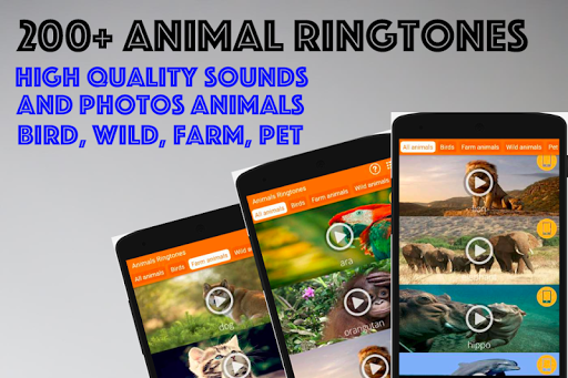 animals ringtones : alarm clock screenshot 2