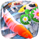 Koi Fish 3D Animated Live Theme Icon
