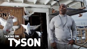 Taking on Tyson thumbnail