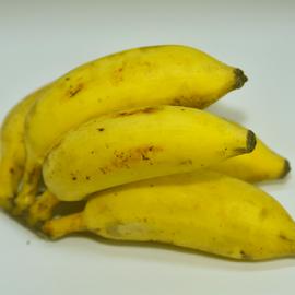 Cherupazham by Vin Shutterbug - Food & Drink Fruits & Vegetables ( banana, njalipoovan, pazham, cherupazham, rasa kadali, puttum pazhavum )