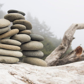 Stone Stack  by Dana Styber - Artistic Objects Other Objects ( driftwood, nature, artistic, beach, stones, rocks, design, foggy weather )