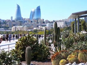 Photo: Kaktuszpark a Bulváron Azerbajdzsán fővárosa kaktuszok