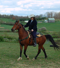Photo: Me riding Lyric this spring. He's a four year old and he's a real handful at times. I love him!