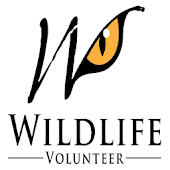 Volunteer Wildlife