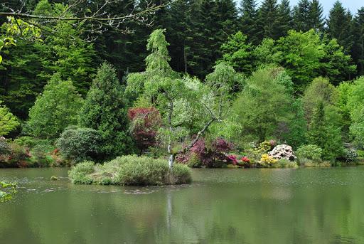 Etang du jardin de Gondremer