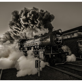SuziSteaming by Rob Vandongen - Transportation Trains