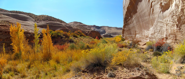 Pasture Canyon panorama