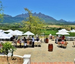 Black Friday Special : Val du Charron Wine and Olive Estate, Guest House and Spa