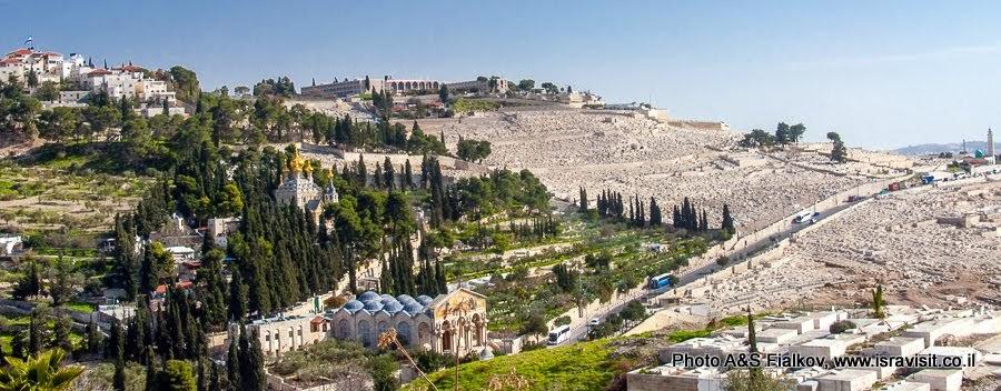 Масличная гора на экскурсии в Иерусалим.