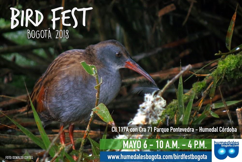 Bird Fest Bogotá