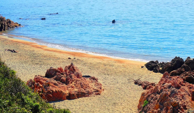 Propriété avec piscine en bord de mer Ajaccio