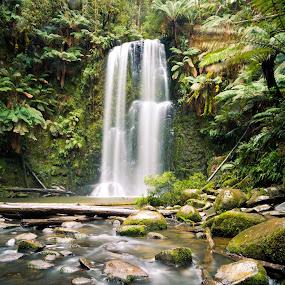 Beauchamp Falls by Madhujith Venkatakrishna - Landscapes Waterscapes