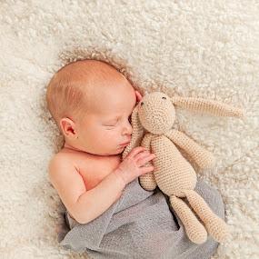 Love Bunny by Jessica Oberlin - Babies & Children Babies ( wrap, bunny, crochet, grey, baby, gray, twins, cuddles, newborn )