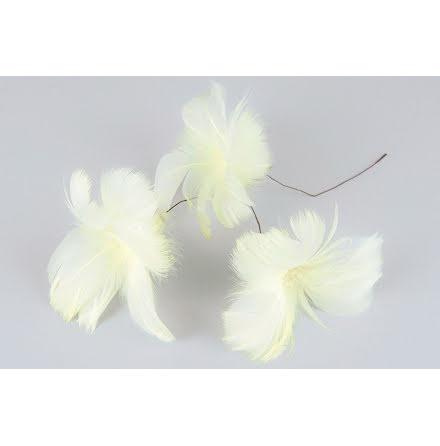 Fjädrar Blom Ljusgul 12-pack