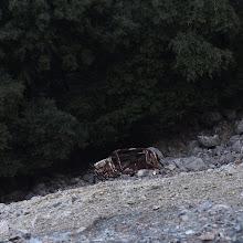Photo: That's steep
