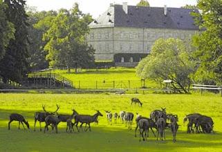 Photo: Tagesziel erreicht: Wildpark Schloss Tambach