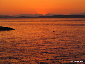 Photo: (Year 2) Day 334 - The Sunsetting Over Vancouver Island #3