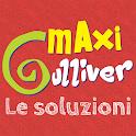 Le soluzioni di Maxi Gulliver