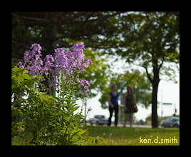 Photo: Pretty violet flowers near the lake.  Two women walk by.  Should have asked for their numbers... :*(