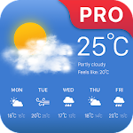 weather forcast pro Icon