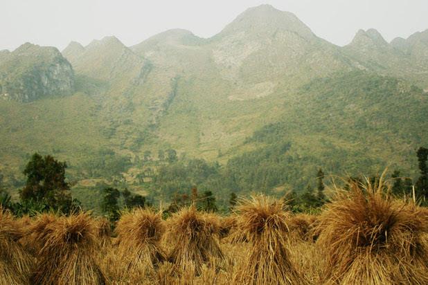 Bao Lac