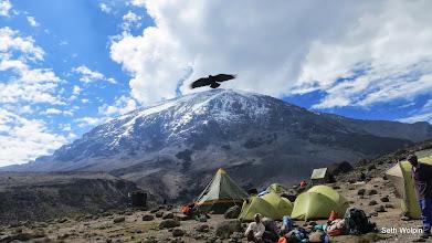 Photo: Soaring high,  at Karanga Camp for lunch