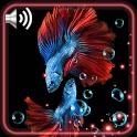 Black Style Aquarium icon