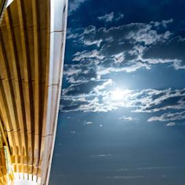Sydney Opera at Night by Rebecca Roy - Buildings & Architecture Architectural Detail ( sydney, opera, nsw, opera house, australia,  )