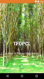 TFDPCL - náhled
