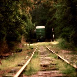 RR tracks by Brenda Shoemake - Transportation Railway Tracks