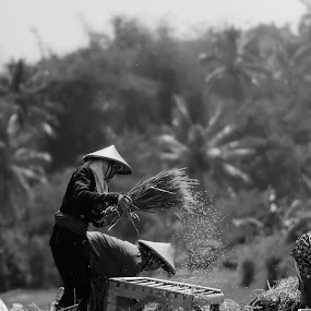 Ngagebot Pare.... by Alie Muhamad - People Street & Candids
