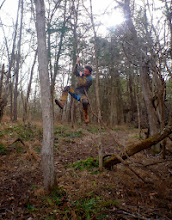 Photo: Tommy swinging on the vine from the downed tree