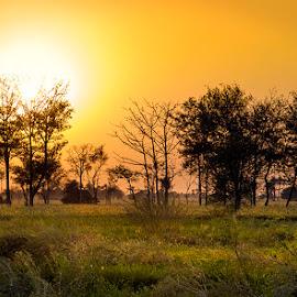 G1 by Abdul Rehman - Landscapes Prairies, Meadows & Fields (  )