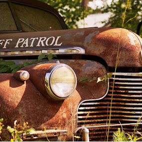 The Sheriff Patrol of the Past by Angelika Sauer - Artistic Objects Antiques ( automobiles · rare things · hidden objects · vintage · green · beauty · transportation · usa · romance · history · story · time · nature · brown · oldtimer · rust · past times · antiques )