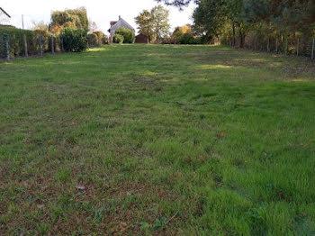 terrain à Candé-sur-Beuvron (41)