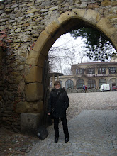 Photo: Brama zamkowa