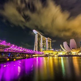 helix bridge singapore by Lester Woodward - Travel Locations Landmarks ( lightshow, marina bay sands, garden in the bay, singapore, landmark, travel )