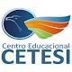 CETESI Download on Windows