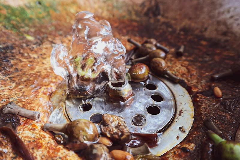 Una chioma cristallina di Isylence