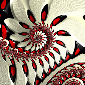 Red and white fractal by Pam Blackstone - Illustration Abstract & Patterns ( spirals, red, white, fractal,  )