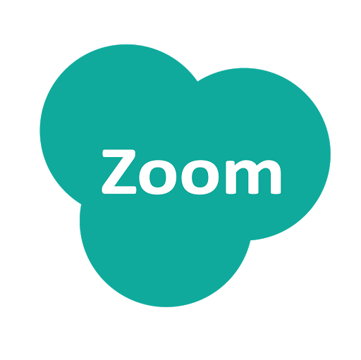 Zoom Call Text Chat
