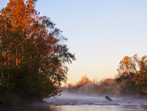 Photo: Misty river at dawn at Eastwood Park in Dayton, Ohio.