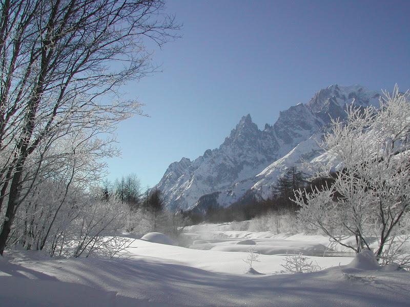 Passeggiata nella Val Ferret di BIAL58